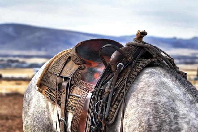 Sedlo na koni.jpg